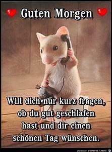 Guten Morgen Bilder Fürs Handy : 659 best guten morgen images on pinterest cool sayings emoji and emoticon ~ Frokenaadalensverden.com Haus und Dekorationen