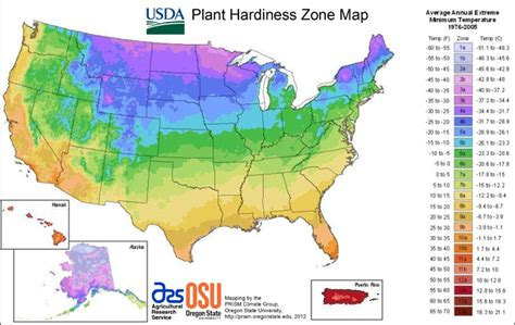 Austin Hardiness Zones, Precipitation, Environment And