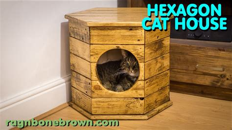 how to house a cat making a hexagon cat house bed pallet wood project youtube
