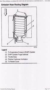 Does The 04 Gto Have An Air Pump     - Ls1tech