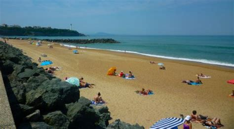 plage chambre d amour anglet les plages d 39 anglet sur la cte basque