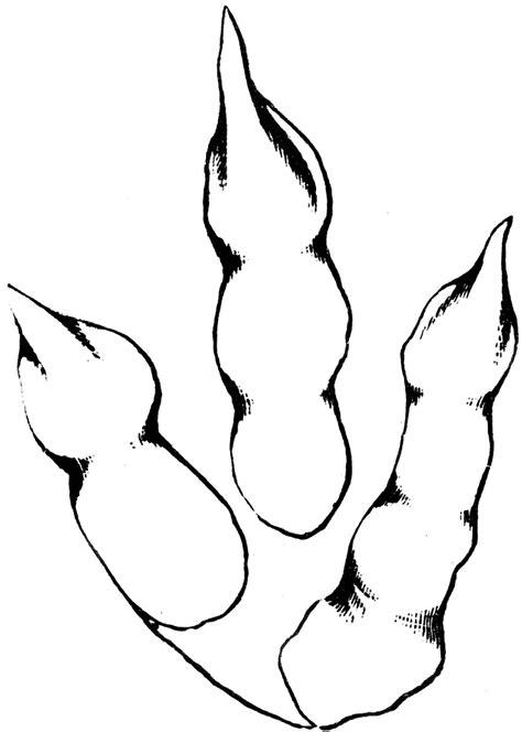brontozoum giganteum clipart