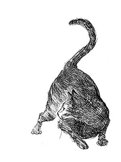 black white illustrations elizabeth berg