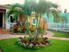 Palm Tree Front Yard Landscaping