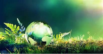 Environmental Science Degrees Studies Study Courses Degree