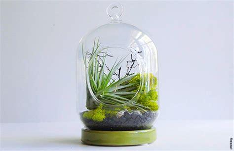 รวมไอเดียสุดเจ๋ง!! การจัดสวนในโหลแก้ว แวววาวสุดน่ารัก