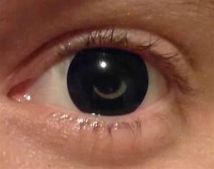 Crazy Color Contact Lenses Halloween Lens Contact Lens ...