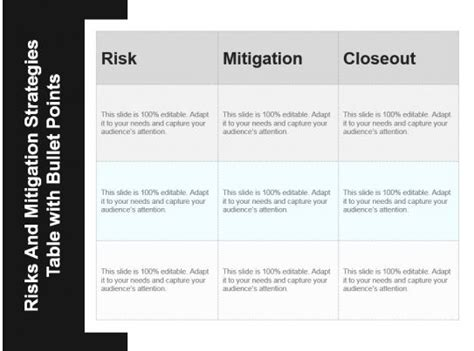 risks  mitigation strategies table  bullet points