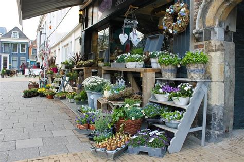 flower shop  gorinchem netherlands stock photo colourbox