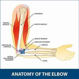 Arthroscopic Debridement Elbow