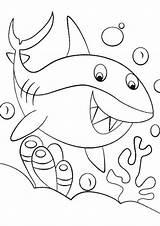 Shark Coloring Tulamama sketch template