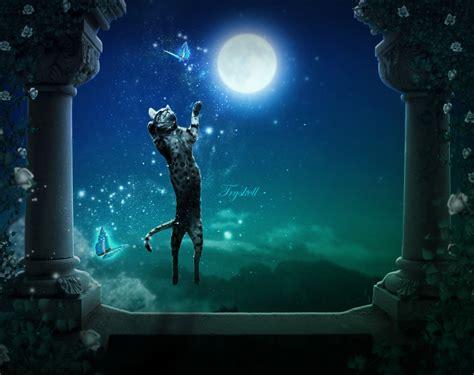 Magic Night By Tryskell On Deviantart
