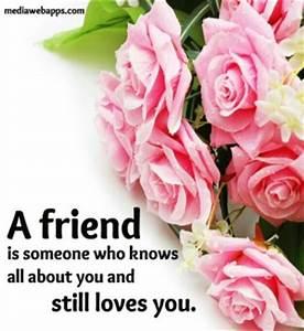 Roses Friendship Quotes QuotesGram