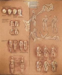 20 Best Drawing Human Bodies Images On Pinterest