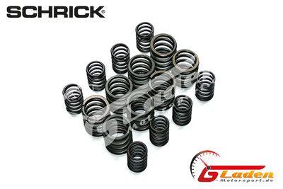 bmw  schrick valve springs    camshafts