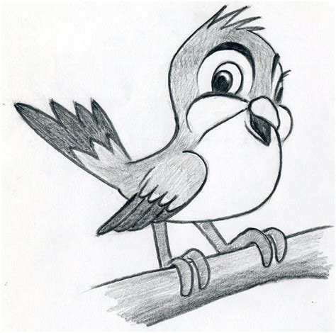 learn  draw cartoon bird  simple   easy steps