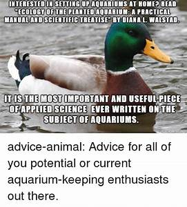 25  Best Memes About Ecology