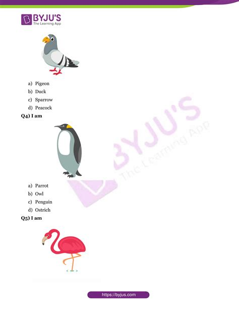 gk questions  birds  answers  class
