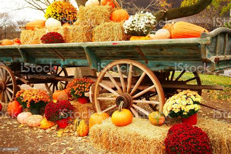 October Wagon Stock Photo - Download Image Now - iStock