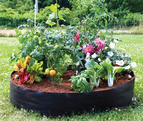 3 Lightweight Fabric Planters For Easy, Portable Container