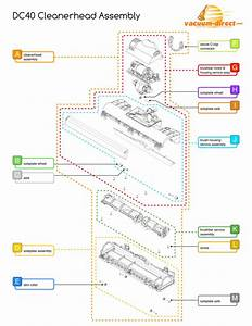 Dyson Dc40 Cleanerhead Assembly Parts Diagram
