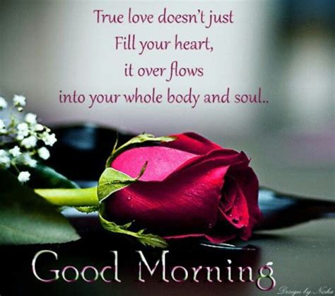 good morning true love pictures   images