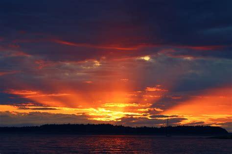 Sentimental Jamboree Nature Loving Sunsets