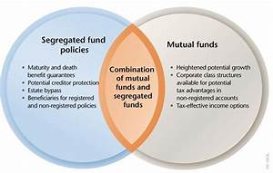 Wide Variety Of Insurance And Financial Products  U00bb Mutual