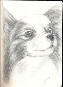 Cute Dog Sketches Animal