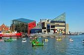 National Aquarium (Baltimore) - Wikipedia