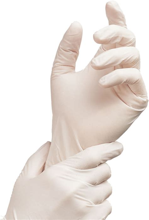 plan cuisine collective adenna nitrole powder free gloves white wnf