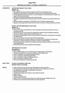 Workday Resume Erp Project Manager Resume Samples Velvet Jobs
