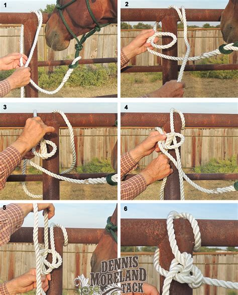 horse knot tack bowline tie tying horses safely knots quick rope dennis moreland riding lead release line end tips type