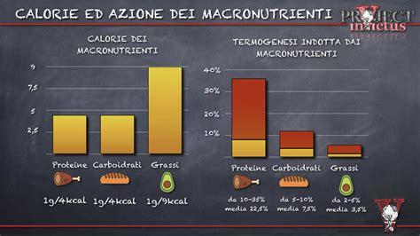 Calcolo Kcal Alimenti Calorie Macronutrienti Project Invictus