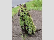 Lustige Werbespots mit Hund, reloaded Issn' Rüde!