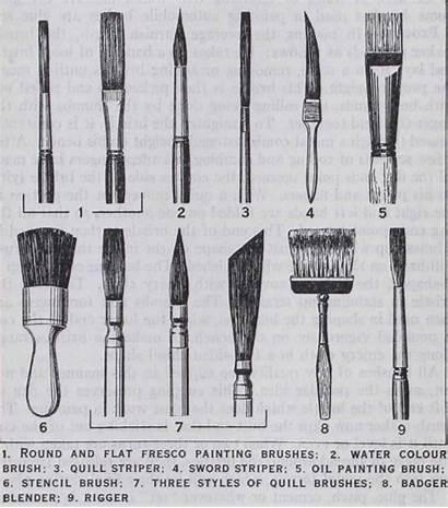 Brushes Artist Styles Fine Various Types Brush