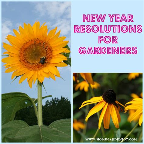 Wonderful New Book Gardeners by New Year Resolutions For Gardeners Home Garden