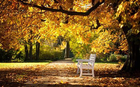 Park bench autumn wallpaper | 2560x1600 | #31276