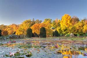 Garten Im Herbst : maurischer garten im herbst wilhelma 39 s maurischer garten during fall mgrs 32unv1505 ~ Whattoseeinmadrid.com Haus und Dekorationen