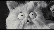 Frankenweenie Cat Meow Compilation - YouTube