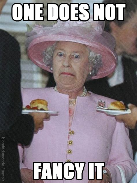 The Queen Meme - you know you re british when your latest queen photo needed more memes so i