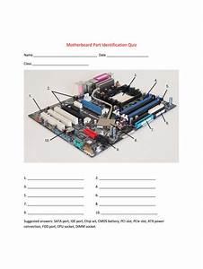 Motherboard Quiz