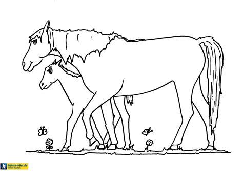 Ausmalbilder Von Elsa : Ausmalbilder Pferde Kostenlos