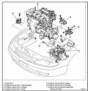 Replace Rear Motor Mount 1993 Honda Accord