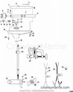 16 Most Motorguide Trolling Motor Wiring Diagram Ideas