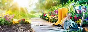 Bicarbonate De Soude Désherbant Dosage : utilisations du bicarbonate de soude pour le jardin les animaux et le bricolage ~ Melissatoandfro.com Idées de Décoration