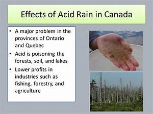 Environmental Issues Around the World - ppt video online ...