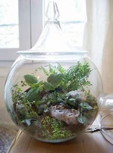 Terrarium Plante Deco : planter un cactus dans un pot en verre ~ Dode.kayakingforconservation.com Idées de Décoration