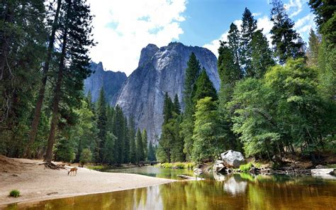 National Parks Where You Can Have Unforgettable