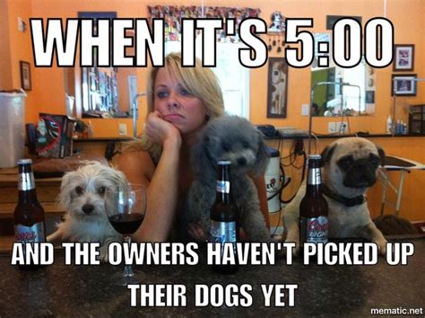 164 best groomer humor images on pinterest so funny comic and humor